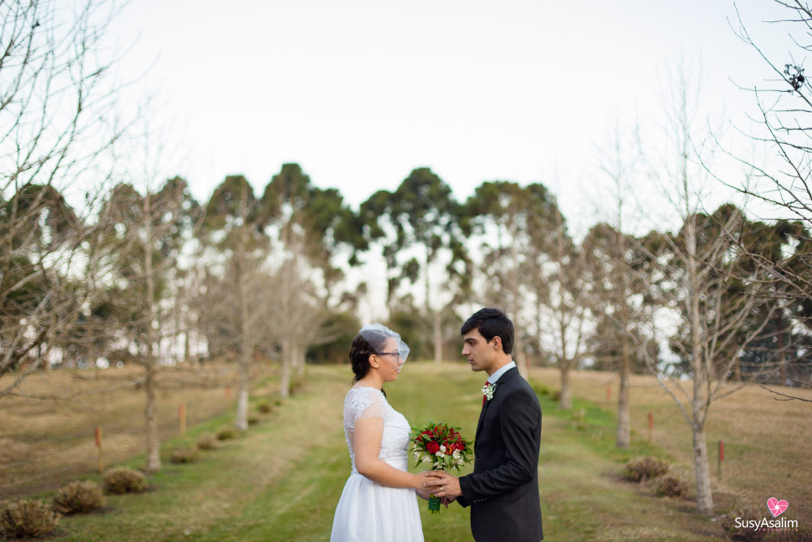 casamento BR-733